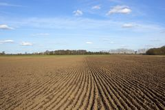 Patterned plowed soil in springtime Royalty Free Stock Photo