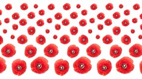 Patterned Poppies Collage on White Background Stock Photos
