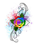 Patterned rainbow rose Stock Photography