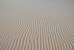 Patterned Sand Dunes Stock Photo