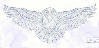 Patterned Snowy Owl Stock Photos