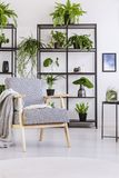 Patterned vintage armchair with blanket and book on it in white modern home interior with plants. Patterned vintage armchair with blanket and book on it in white royalty free stock photography
