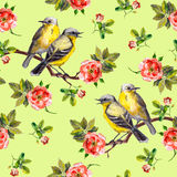 Patterned white floral texture with drawn birds in roses Stock Photo
