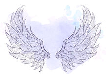 Patterned wings Royalty Free Stock Image