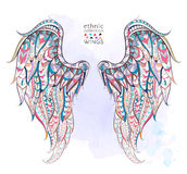 Patterned wings Stock Photo
