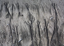 Patterns in beach sand Royalty Free Stock Images