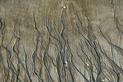Patterns on beach sand created by water Royalty Free Stock Photo