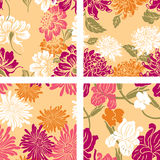 Patterns of the decorative flowers Stock Image