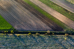 Patterns in the farmland fields at spring Stock Images