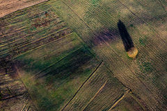 Patterns in the farmland fields at spring Royalty Free Stock Image