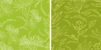 Patterns with flowers and leafs. Vector set of seamless floral grunge patterns with flowers and leafs Royalty Free Stock Images