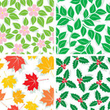 Patterns of four seasons Royalty Free Stock Images