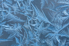 The patterns by the frost on the window Royalty Free Stock Photos