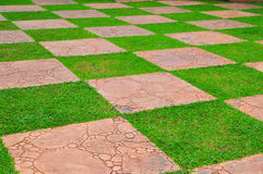 Patterns on Grass Stock Photos
