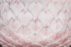 Patterns layer of old pink stucco lotus petals texture for background stock photography