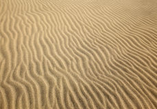 Patterns left by the wind on a sand dune Royalty Free Stock Photos