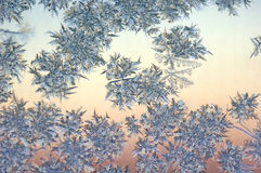 The patterns made by the frost Stock Image