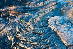 Patterns of molten cooled lava Stock Photography