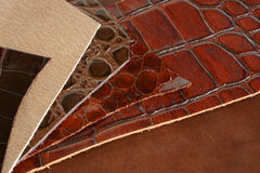 The patterns of natural leathers Royalty Free Stock Photography