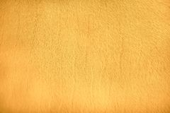 Patterns of nature animal fur , gold yellow or orange of cow texture background. Close up Patterns of nature animal fur , gold yellow or orange of cow texture stock photo