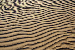 Patterns in the Sand Royalty Free Stock Images