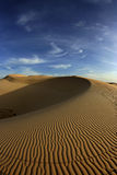 Patterns on sand dune Stock Photography