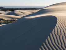 Patterns in sand dunes shaped by wind Royalty Free Stock Images