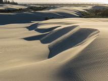 Patterns in sand dunes shaped by wind Stock Images