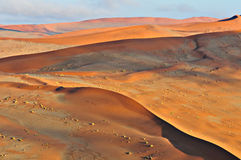 Patterns in the sand of the Namib Stock Images