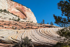 Patterns in the sandstone, Zion National Park, Utah Stock Photos