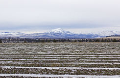 Patterns of Snow In Plowed Fields Mountain Background Royalty Free Stock Images