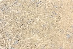 Patterns Texture of sand on the beach. royalty free stock photo
