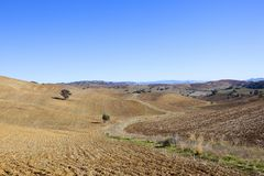 Patterns and textures of plowed fields in Andalcia Stock Image
