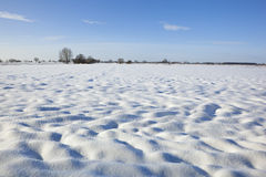 Snowy fields Royalty Free Stock Images