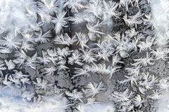 Frost patterns on the window Royalty Free Stock Photos