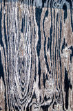 Patterns in Wood Royalty Free Stock Image