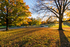 Patterson Park During Autumn in Baltimore, Maryland Royalty Free Stock Photos