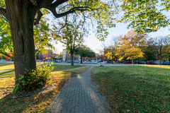Patterson Park During Autumn in Baltimore, Maryland Royalty Free Stock Photo