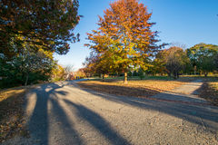 Patterson Park During Autumn en Baltimore, Maryland imagenes de archivo