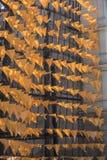 Pattert del materiale da costruzione di progettazione della parete della bandiera gialla Fotografie Stock Libere da Diritti