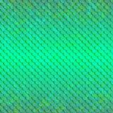 Pattert-Fisch-grün-Licht lizenzfreie abbildung