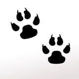 Pattes animales Images libres de droits