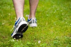 Pattes d'homme de marche sur l'herbe Images stock