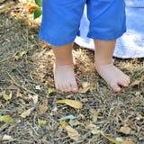 Pattes de chéri Petites pattes avec du charme Image stock