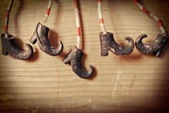 Pattes de sorcières Photo stock