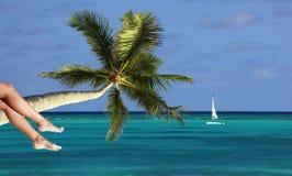 Pattes du `s de femme sur le fond tropical de plage images stock