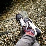 Pattes et pieds Photos stock