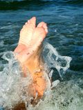 Pattes intéressantes dans l'eau Photographie stock