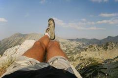 Pattes mâles détendant au sommet Images stock