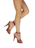 Pattes sexy et drôles dans des chaussures Photo stock